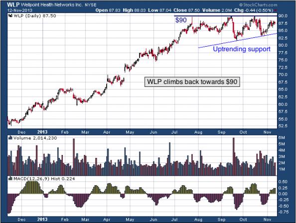 1-year chart of WLP (WellPoint, Inc.)