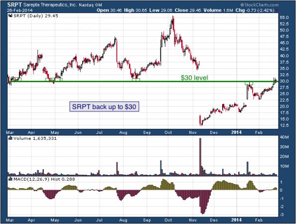 1-year chart of SRPT (Sarepta Therapeutics, Inc.)