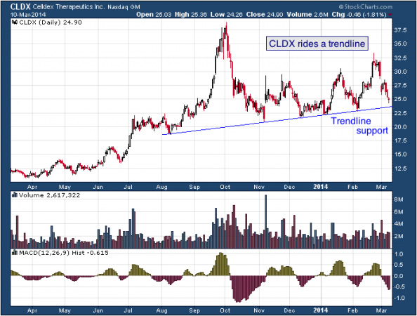 1-year chart of CLDX (Celldex Therapeutics, Inc.)