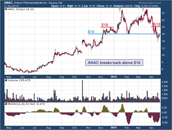 1-year chart of ANAC (Anacor Pharmaceuticals, Inc.)