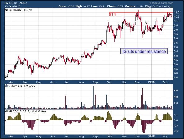 1-year chart of IGI (AMEX: IG)