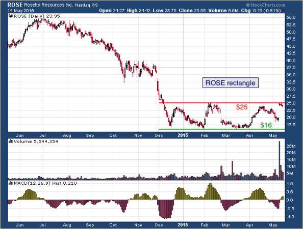 1-year chart of Rosetta (NASDAQ: ROSE)