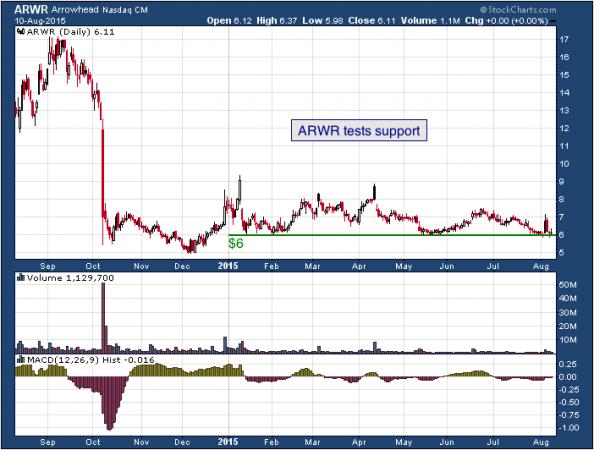1-year chart of Arrowhead (NASDAQ: ARWR)