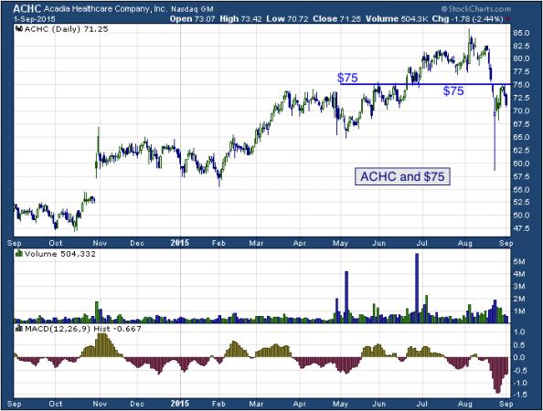 1-year chart of Acadia (NASDAQ: ACHC)