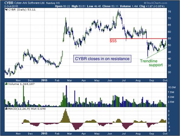 1-year chart of Cyber (NASDAQ: CYBR)