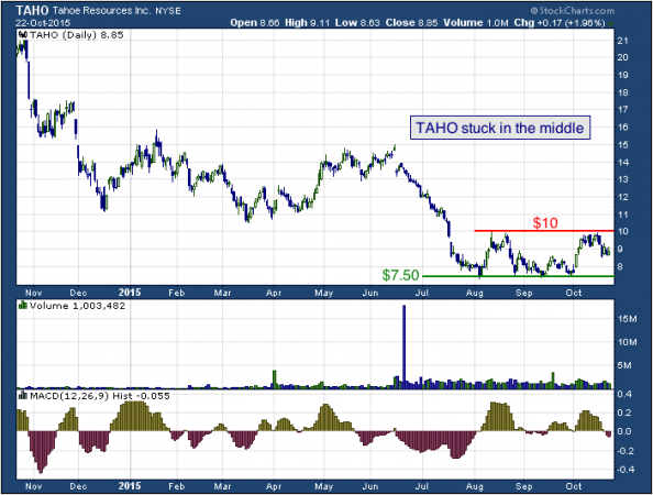 1-year chart of Tahoe (NYSE: TAHO)