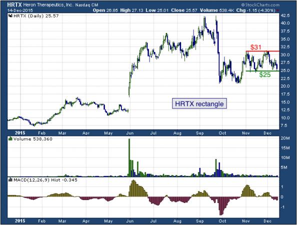 1-year chart of Heron (NASDAQ: HRTX)