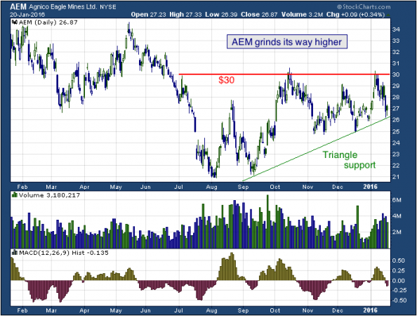 1-year chart of Agnico (NYSE: AEM)
