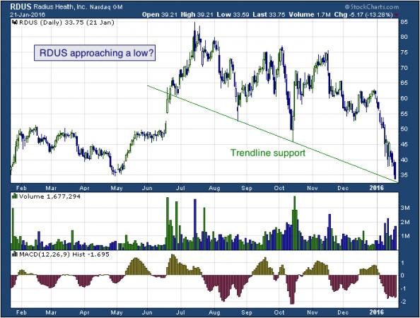 1-year chart of Radius (NASDAQ: RDUS)