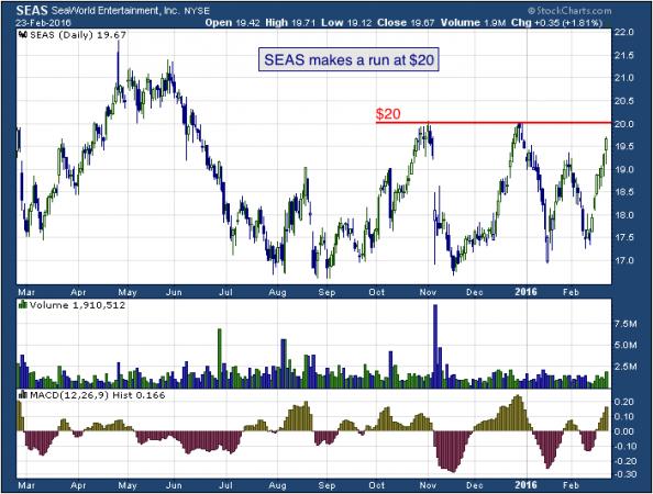 1-year chart of SeaWorld (NYSE: SEAS)