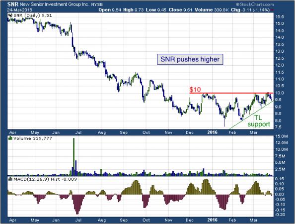 1-year chart of New Senior (NYSE: SNR)