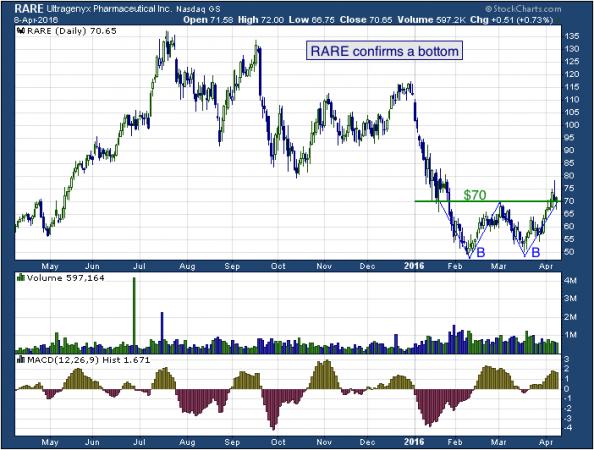 1-year chart of Ultra (NASDAQ: RARE)