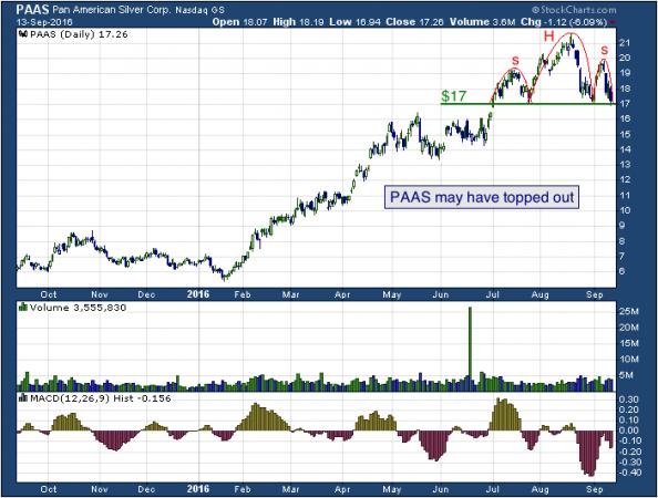 1-year chart of Pan (NASDAQ: PAAS)