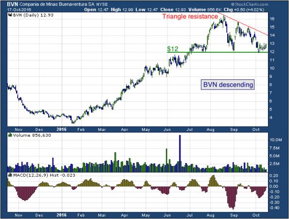 1-year chart of Compañía (NYSE: BVN)