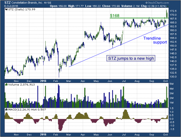 1-year chart of Constellation (NYSE: STZ)