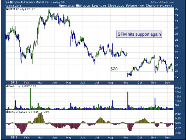 1-year chart of Sprouts (NASDAQ: SFM)