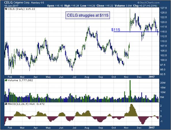 1-year chart of Celgene (NASDAQ: CELG)