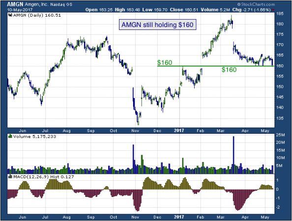1-year chart of Amgen (NASDAQ: AMGN)