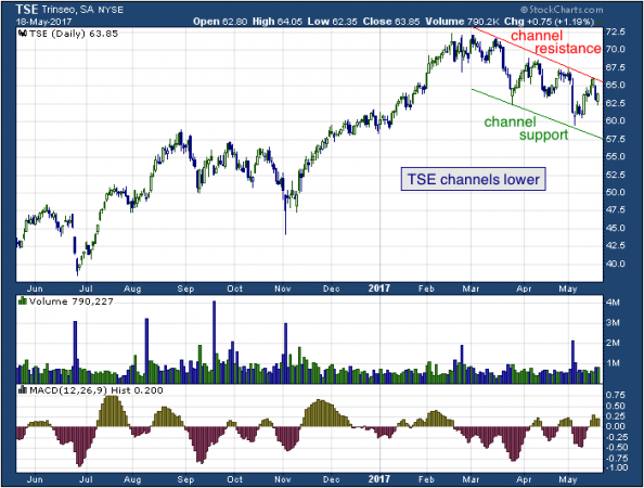 1-year chart of Trinseo (NYSE: TSE)
