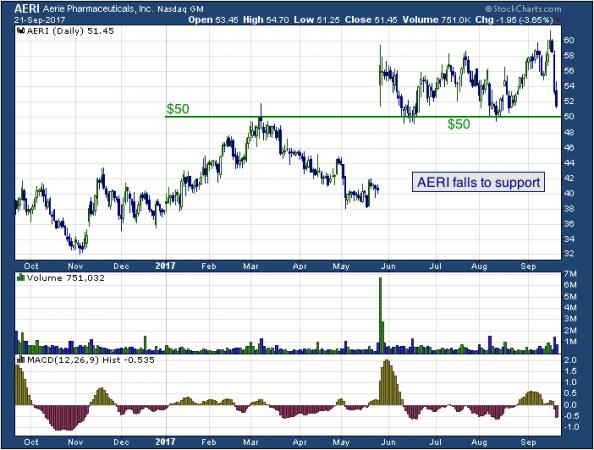 1-year chart of Aerie (NASDAQ: AERI)