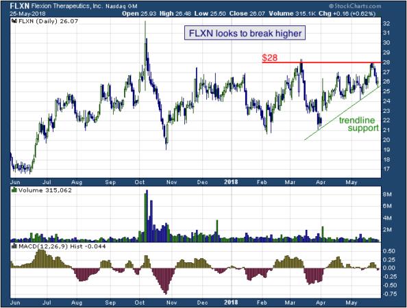 1-year chart of Flexion (NASDAQ: FLXN)