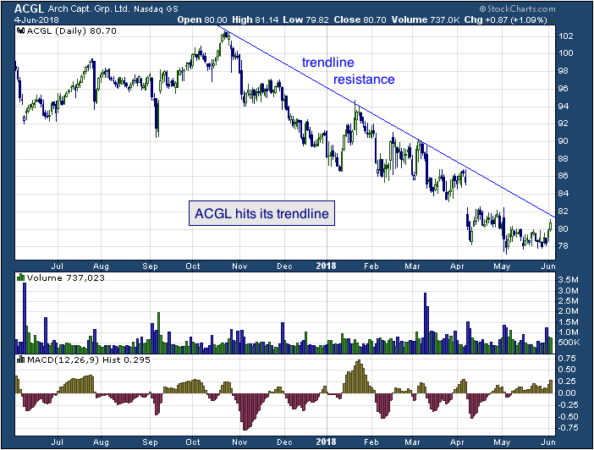 1-year chart of Arch (NASDAQ: ACGL)