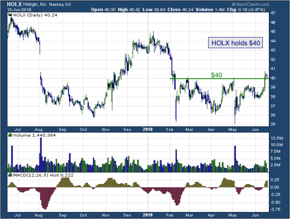1-year chart of Hologic (NASDAQ: HOLX)