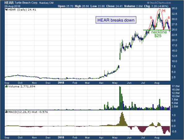 1-year chart of Turtle (NASDAQ: HEAR)
