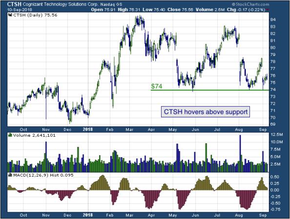 1-year chart of Cognizant (NASDAQ: CTSH)