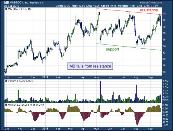 1-year chart of MINDBODY (NASDAQ: MB)