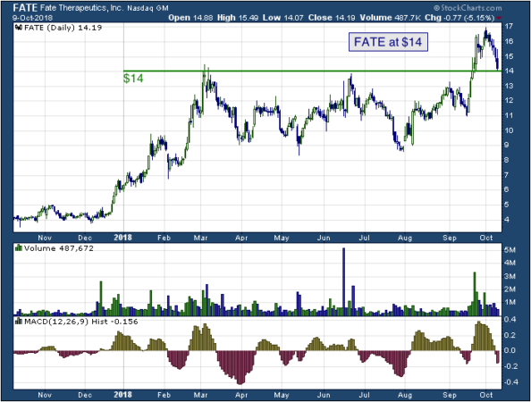 1-year chart of Fate (NASDAQ: FATE)