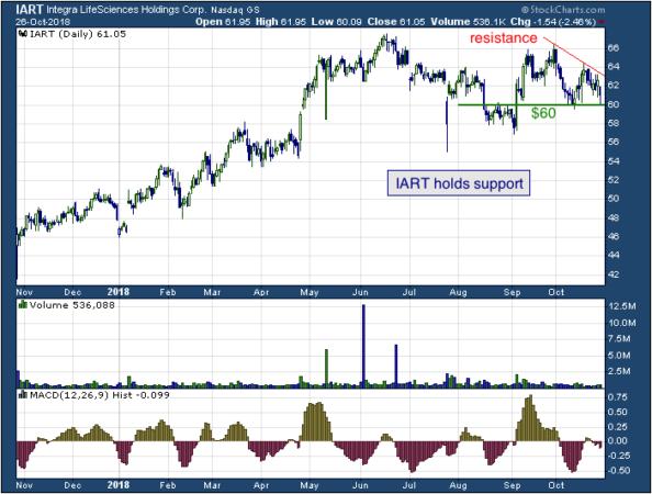 1-year chart of Integra (NASDAQ: IART)