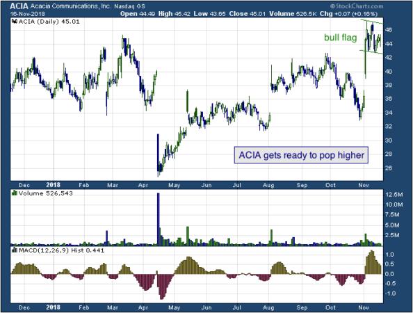1-year chart of Acia (Nasdaq: ACIA)